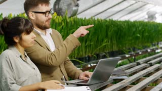 PAN of bearded businessman in glasses choosing tulips in wholesale greenhouse: he typing on laptop and talking to female gardener making notes on clipboard