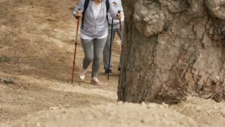 PAN of unrecognizable elderly people with trekking poles and backpacks walking uphill on hike in forest