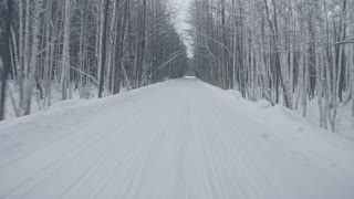 POV of driving along snowbound rural road in forest with arching trees