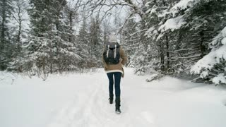 Rear view following shot of female tourist with backpack walking on snow through forest at cold winter day