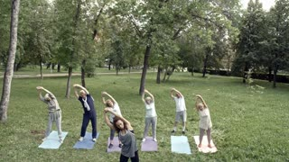 Six elderly people working out in park with their trainer and doing stretching exercise for oblique muscles
