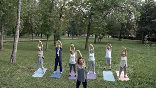 Six retired people doing side stretching exercise with their young female trainer during group workout in park, front view