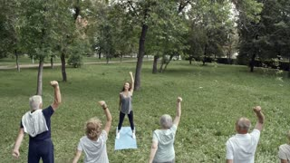Tilt down shot of six elderly people standing on yoga mats in park doing stretching exercises for arms with trainer