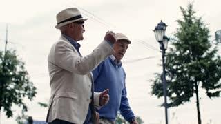 Tilt down shot of two seniors walking along pedestrian street and having friendly conversation
