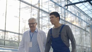 Tracking of senior agronomist in lab coat and young male worker in overalls discussing work and walking in industrial greenhouse