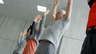 Dutch angle shot of senior men and women in sportswear standing in line and doing forward bend in yoga class