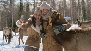 Young happy woman taking picture with smart phone of her and her husband on deer farm at sunny winter day