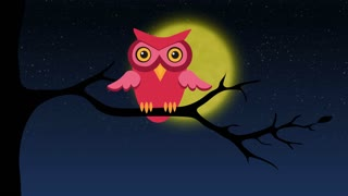 Owl sitting on tree branch at night, learning to fly.