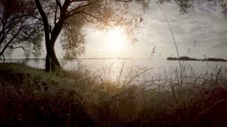 Calm and beautiful nature scene with lake and sunshine