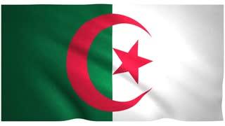 Flag of Algeria waving on white background