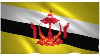 Flag of Brunei waving on white background