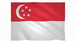 Flag of Singapore waving on white background