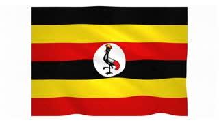 Flag of Uganda waving on white background