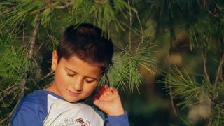 boy hiding in pine branches
