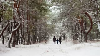 Family walking through snowy woods