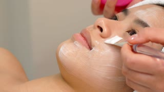 Beauty specialist using brush to apply cosmetic mask on girl's face at the spa. Close up of cosmetologist applying facial mask on woman's cheek. Pretty asian client getting her facial skin younger at
