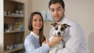 Male vet doctor posing with dog and it's owner. Pretty caucasian woman okaying the service at the vet clinic. Male veterinarian holding dog in his hands