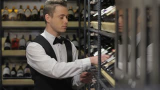 Sommelier choosing a bottle of wine at the wine cellar