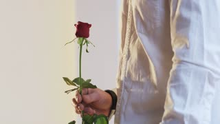 A Man Gives a Red Rose to a Woman