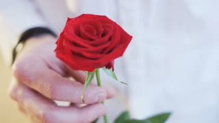 Man Holding a Red Rose in His Hands