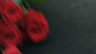 Red Roses Falling Down