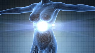 science anatomy scan of human body in x-ray with glow mammary gland on blue