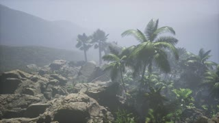 4k Aerial view of beautiful palm trees and mountains