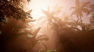4k Amazing sunset at tropical beach with palm trees. Travel landscapes and destinations