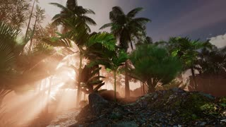 4k Amazing sunset at tropical beach with palm trees. Travel landscapes