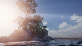 4k forest tree by the sea