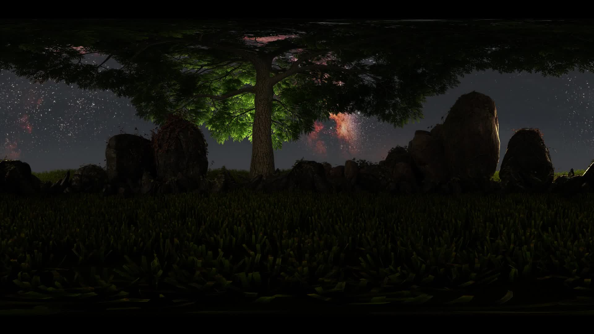 5K Milky Way stars at sunrise and tree virtual reality 360 degree video. Elements of this image furnished by NASA