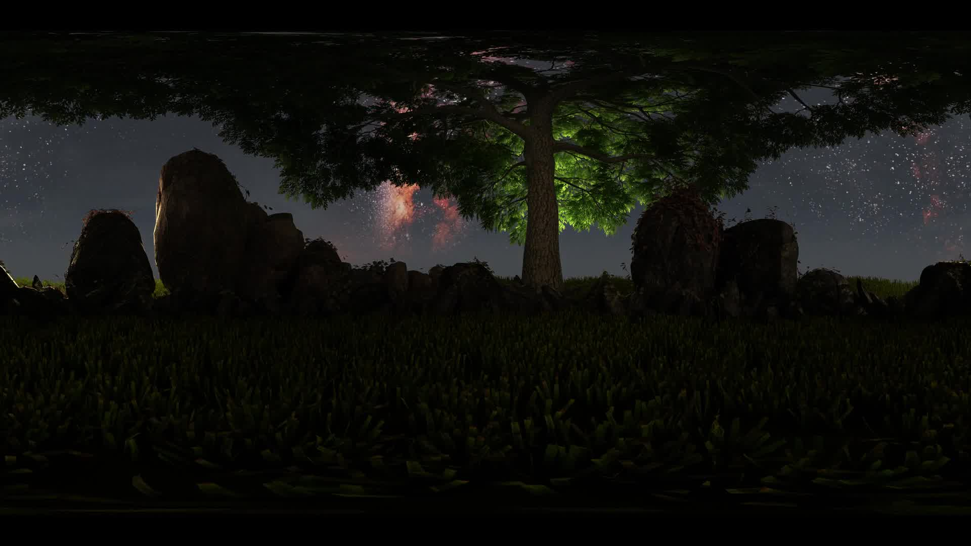 5K Milky Way stars at sunset and tree virtual reality 360 degree video. Elements of this image furnished by NASA