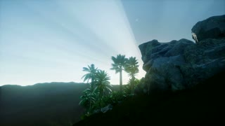 Flyover palm trees, tropical forest in mountains at sunset