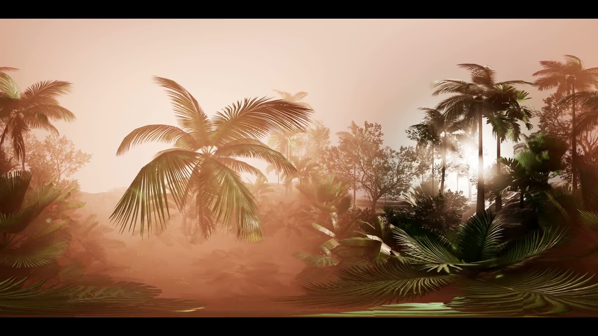 vr 360 camera moving shot of a lush tropical jungle in a sun with coconuts, palm trees, and amazing natural lighting at fog. ready for use in virtual reality