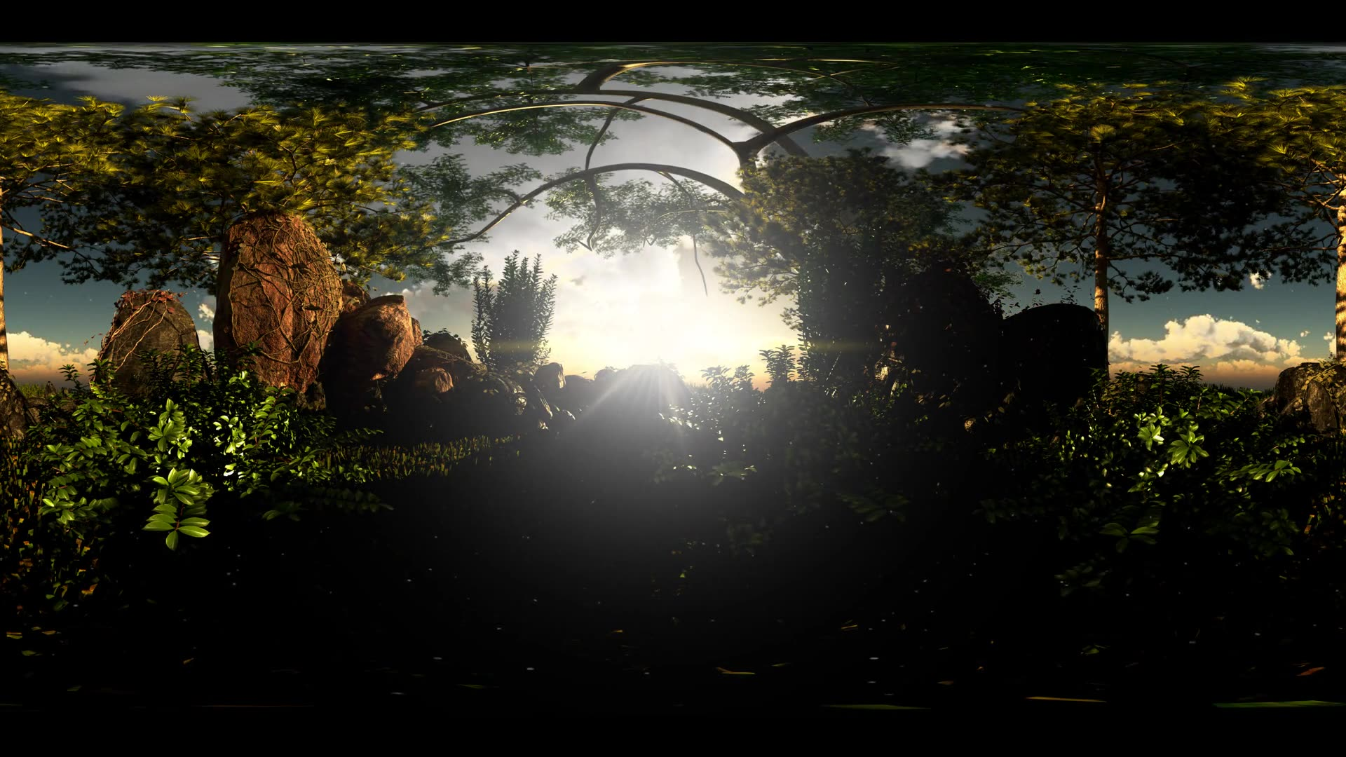 vr 360. timelapse of cloud sunset and trees at rocky field in virtual reality 360 degree video