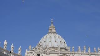 birds over St. Peter's Basilica. Vatican City, Rome, Italy