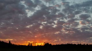 Evening forest clouds sky time-lapse, Ural, Siberia
