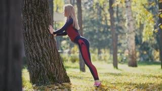 Fitness woman strength training doing workout at sunny autumn park. Fit caucasian sporty girl exercising her body - doing squats near tree