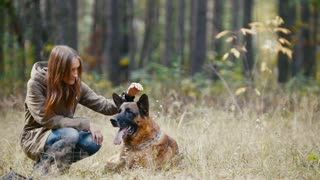 Girl With a Dog at autumn forest - young pretty woman petting her dog - german shepherd
