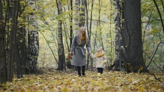 Little daughter with her mother walk in the autumn woods and kicked the yellow leaves