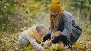 Mom spends time with her daughter - walks in autumn park and collect leaves, close up
