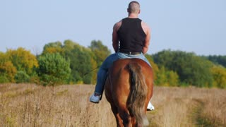 A strong man with a strong body in a black t-shirt and denim pants rides a horse moving away from the camera
