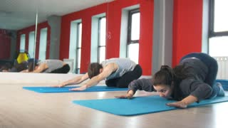 Athletic man and woman workouts on the rug in the fitness class