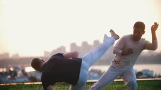 Athletic men show Brazilian capoeira dance on grass, summer