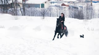 Attractive longhaired female rider riding a black horse through the drifts in the winter field, dogs running nearby