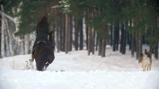 Attractive young woman riding a black horse through the snow in the forest