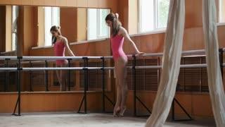 Beautiful flexible girl warming up at the ballet bar