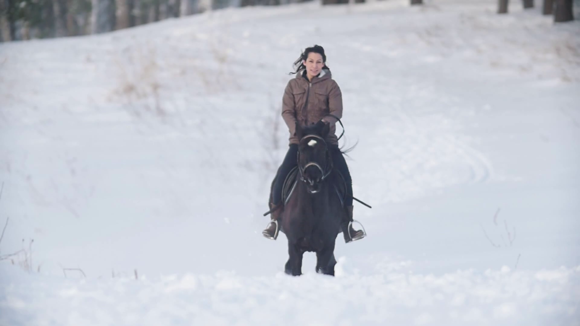 Beautiful Longhaired Female Rider Wild And Fast Riding Black Horse Through The Snow Dog Running Nearby Slow Motion Stock Video Footage Storyblocks