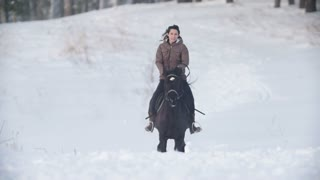 Beautiful longhaired female rider wild and fast riding black horse through the snow, dog running nearby, slow-motion