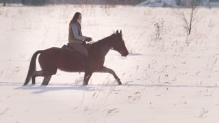Beautiful longhaired woman riding a brown horse through the deep snowbank in the forst